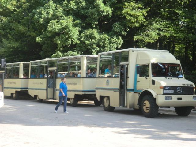 園内を走るバス