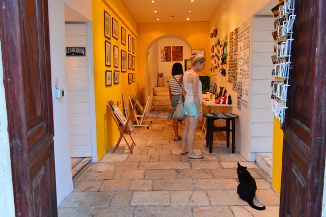 フヴァル島で出会った、店番中の猫ちゃん